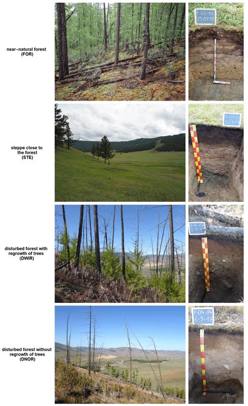 https://soil.copernicus.org/articles/7/563/2021/soil-7-563-2021-f02