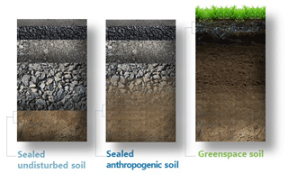 https://soil.copernicus.org/articles/7/661/2021/soil-7-661-2021-f02
